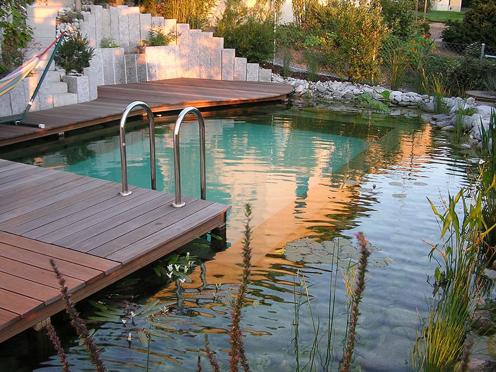 Naturpool Schwimmteich Panzer Garten Und Landschaftsbau